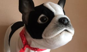 Aston Martin Bulldog Unique Miss Stuffed Plush toy French Bulldog Stofftier Realistic Oh soft