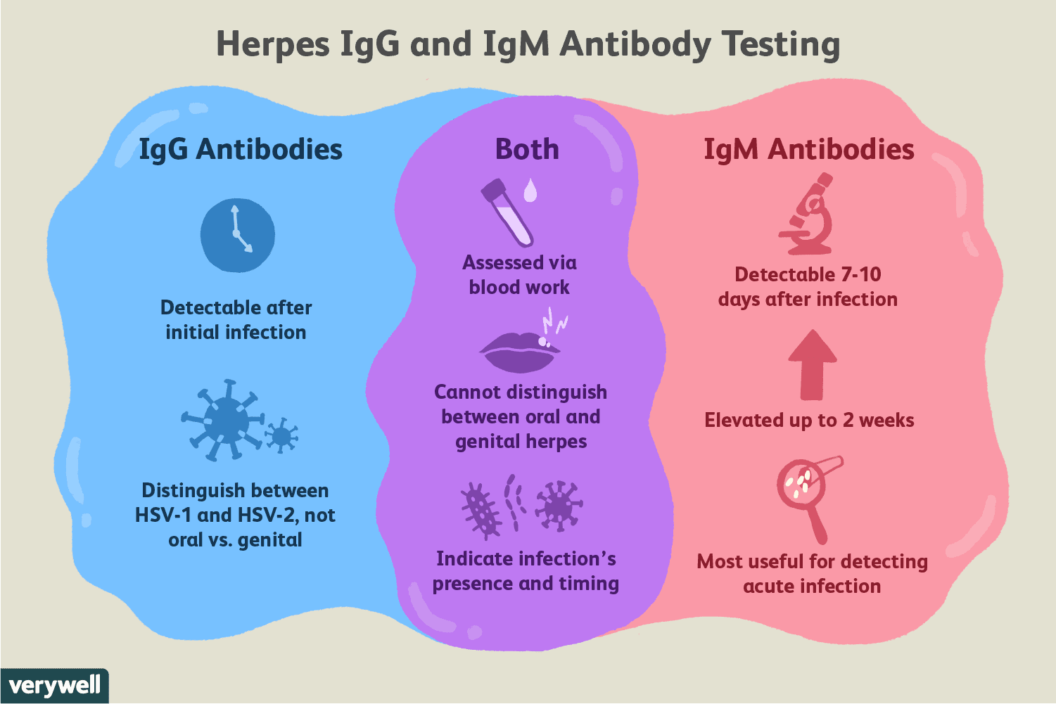 Hsv 2 Igg Type Specific Ab Inspirational Herpes Igg Test Uses Side Effects Procedure Results