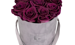 Infinity A Number Best Of Classic Infinity Rosebox Velvet Plum